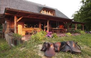 Farm stay Orlov put, Bauernhöfe  Bilje - big - 75