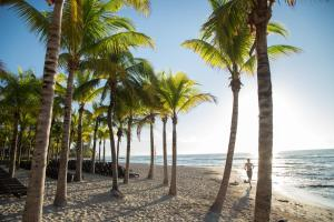 Sandos Caracol Select Club Adults Only All Inclusive - Playa del Carmen