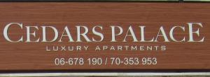 Cedars Palace - Apartment - Al Arz