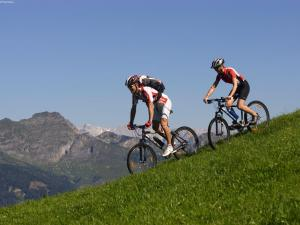 Mountain and Lake XL, Apartments  Zell am See - big - 3