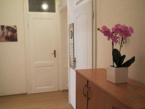 Apartment Fairy Tale, Ferienwohnungen  Karlsbad - big - 42