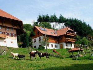 Schwoererhof - Hinterhöfe