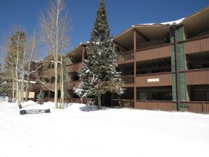 Timberline 24, Appartamenti  Dillon - big - 8