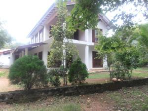 Dambulla Gate Hostel - Habarana