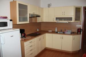 Apartment Lilia - Karlovy Vary