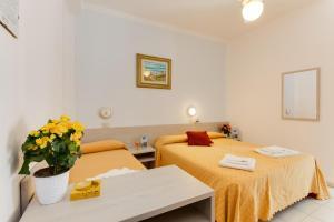 Auberges de jeunesse - Hotel Nevia