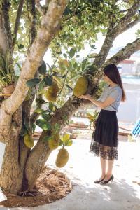 MỘC HOMESTAY, Chaty v prírode  Sơn La - big - 62
