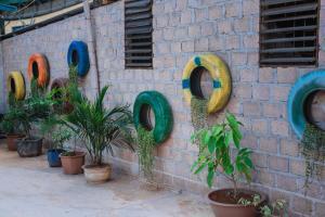 MỘC HOMESTAY, Chaty v prírode  Sơn La - big - 60