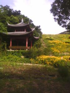 金荷之家, Appartamenti  Zhoushan - big - 212