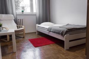 Nest Budget Toruń