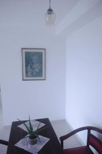 Apartamento Salvador, Prázdninové domy  Salvador - big - 9