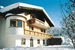 obrázek - Haus Auer 110W