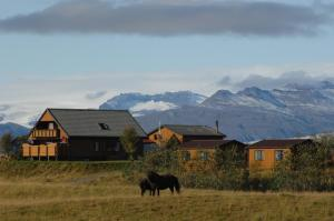 Accommodation in Westfjords