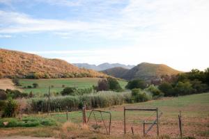 Daskop Farm Stay - Buffelsdrif