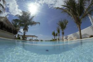 Dolphin Beach Resort (5 of 122)