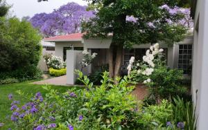 Rosebank Lodge Guest House, Pensionen  Johannesburg - big - 65