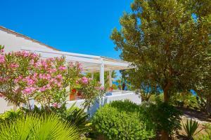 Villa Ginestra, Vily  Scopello - big - 2