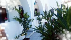 Zahara Eolian Houses - AbcAlberghi.com