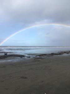 An Island Haidaway, Pensionen  Masset - big - 13