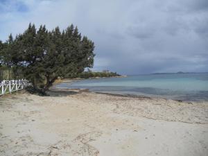 Appartamento spiaggia Ira - AbcAlberghi.com