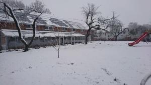 Franzenhof