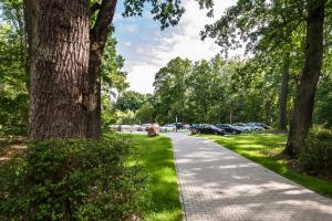 Ringhotel Schorfheide, Tagungszentrum der Wirtschaft, Hotely  Joachimsthal - big - 32