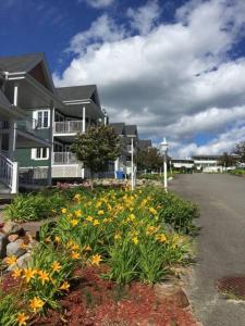 Condo Lac Archambault 313 - Apartment - Saint-Donat-de-Montcalm