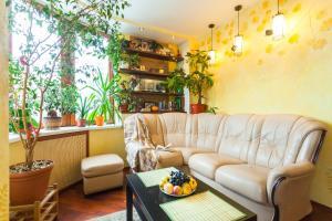 Aleksandrino Apartments - Novoye Koyrovo