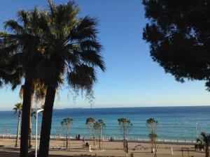 Cannes Terrace Beach Front & Sea view, Apartments  Cannes - big - 117