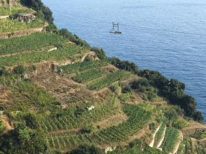 Zia Letizia Bed And Wine, Penziony  Monterosso al Mare - big - 132