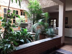 obrázek - Casa Jardim