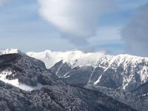 Bran Monte Crai Chalet, Penzióny  Bran - big - 34