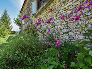 Maison De Vacances - Loubejac 3, Prázdninové domy  Saint-Cernin-de-l'Herm - big - 16