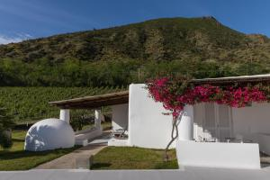 Capofaro Locanda & Malvasia, Hotels  Malfa - big - 58