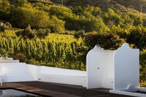 Capofaro Locanda & Malvasia, Hotels  Malfa - big - 33