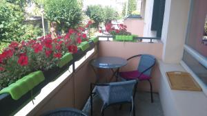 Turgot - Apartment - Thonon-les-Bains