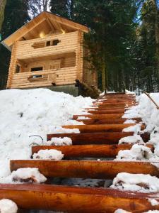 Домик в лесу - Alibek
