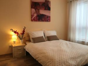 obrázek - Apartament GARDEN Standard