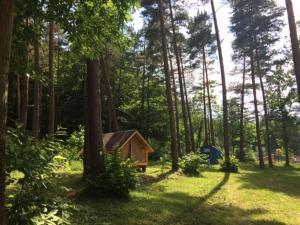 Camping Osenbach