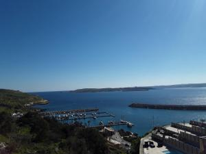 Felluga harbour view