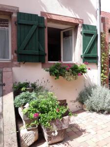 Location gîte, chambres d'hotes charmant petit appartement en Alsace dans le département Bas Rhin 67