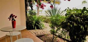 Porto Antigo 2 BeachFront, Apartments  Santa Maria - big - 3