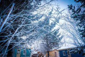 obrázek - Backyard Village
