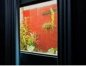 Xua Hostel Santos, Bed & Breakfasts  Santos - big - 4
