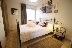 Apartments Marer, Apartmány  Trogir - big - 62