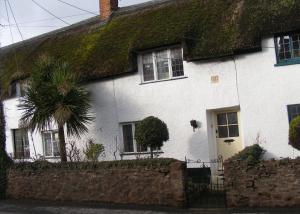 Tudor Thatch Cottage - Williton