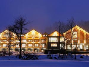 Black Forest Lodge - Apartment - Feldberg
