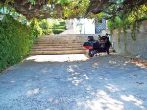 GD SALENTO Grotta Verde - Castro di Lecce