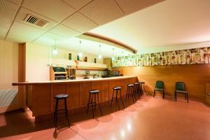 SOMMOS Hotel Benasque Spa, Отели  Бенаске - big - 50