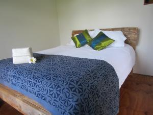 Mulberry Grove Retreat, Bed and breakfasts  Tryphena - big - 10